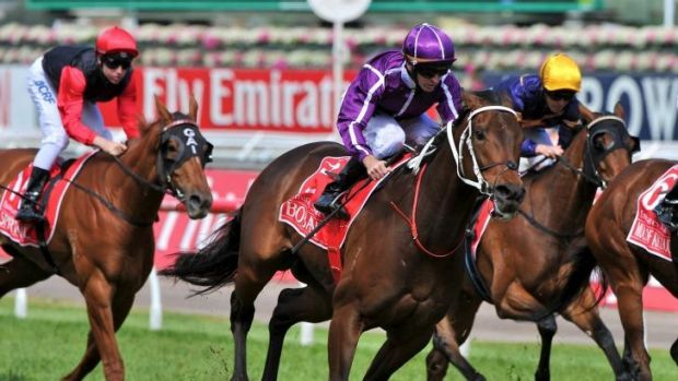 Group 1 success: Glyn Schofield and Boban combine to take the Emirates Stakes in November.