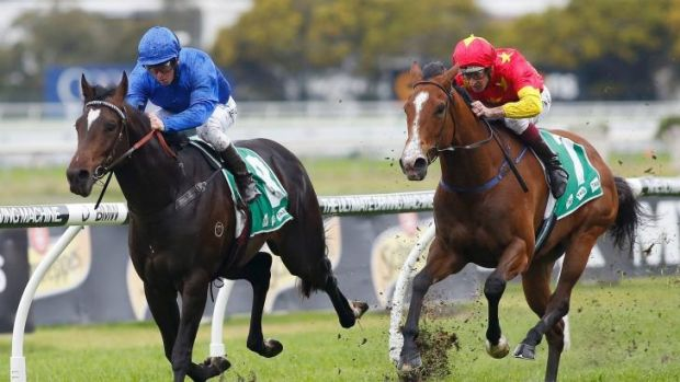 Perfect record: Kerrin McEvoy pilots Sweynesse to victory in the opening event at Rosehill on Saturday.