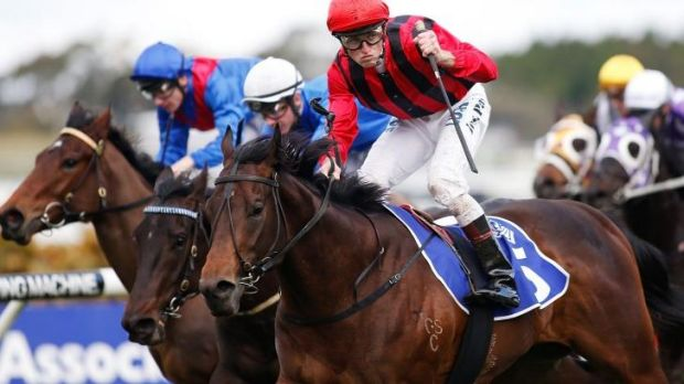 Dominant: Hallowed Crown trounced his rivals on Saturday.
