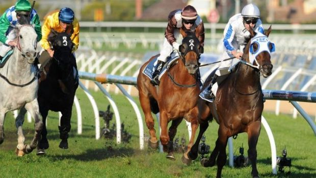 Too good: Dissident races away with the Memsie Stakes at Caulfield on Saturday.