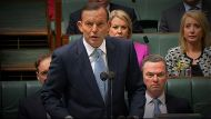 Royal Commission reveals 'littany of failures' (Video Thumbnail)