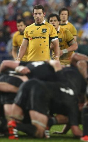 Super form: Ewen McKenzie is set to give Bernard Foley a shot in the Wallabies No.10 jumper.