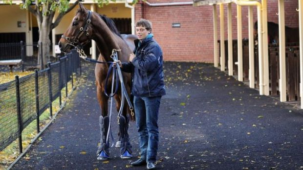 Lachie Hayes walks Lankan Rupee after a trackwork session at Moonee Valley on Tuesday.