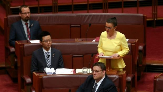 Palmer United Party senator Jacqui Lambie used her maiden speech to reiterate her calls for a royal commission into the ...