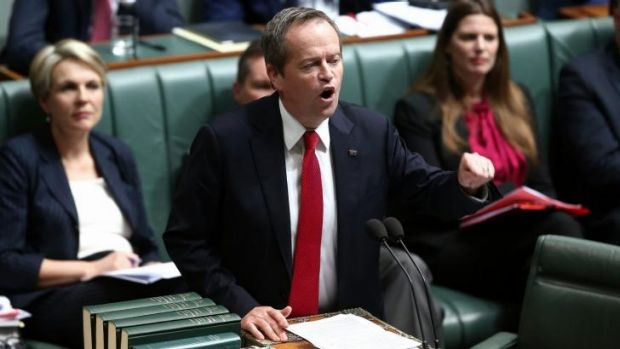 """Opposition Leader Bill Shorten has dubbed the proposed fund, the """"Palmer piggy bank""""."""