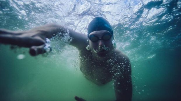 Marathon man: Lochie Hinds  has completed the Triple Crown of long-distance swimming.