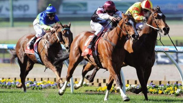 Angelic Light flashes past Lankan Rupee to steal the McEwen Stakes on Saturday.