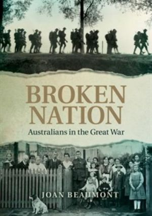 """Broken Nation: """"Outstanding for the breadth of its scope and its highly perceptive arguments."""""""