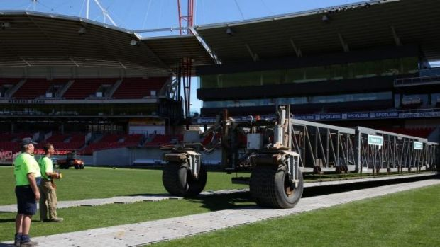 Anyone for cricket?: The Spotless Stadium drop-in pitch.