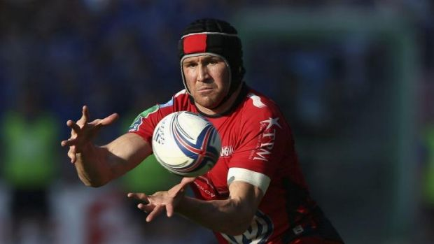 Wanted man ... Matt Giteau playing for Toulon.
