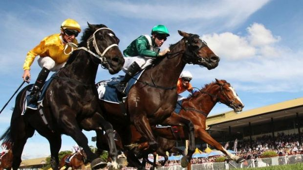Good team: Tommy Berry (green silks) and Almalad win the J.J. Atkins during the Brisbane carnival in June.