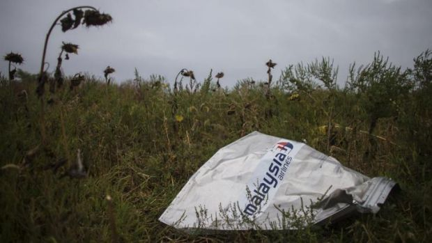 A piece of wreckage of the downed Malaysia Airlines Flight MH17 is pictured near the village of Hrabove (Grabovo) in ...