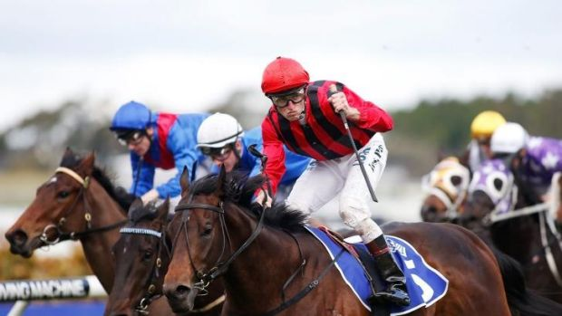 Hallowed turf: Josh Parr wins the Run to the Rose a fortnight ago on Hallowed Crown.  Hugh Bowman takes the ride in ...