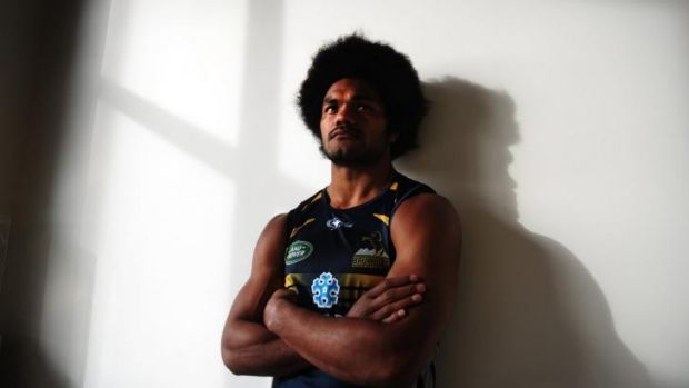 """Brumbies coach Stephen Larkham says Speight will """"definitely"""" play his first Test for Australia this year despite his ..."""