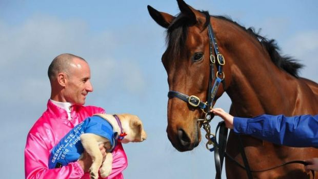 Inquisitive: Glen Boss with a guide dog pup and Mark Kavanagh runner Super Cool.