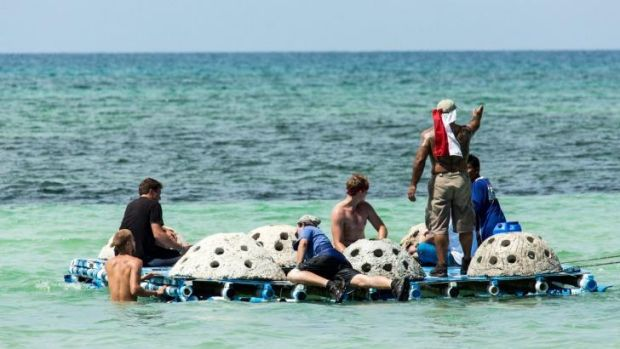 Volunteers have built 60 artificial reefs to help stimulate coral regeneration as part of YPDR's marine restoration program.