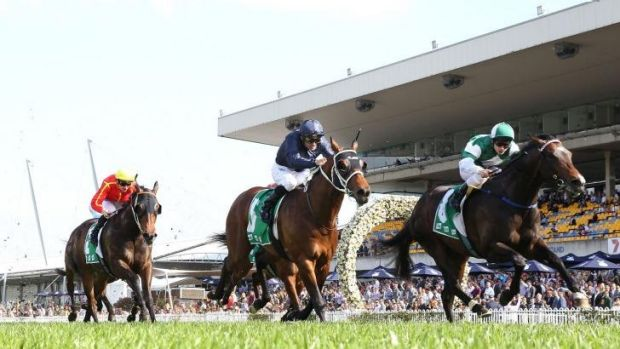 Acceleration: Tim Clark rides Cluster (right) to victory in the Theo Marks Stakes at Rosehill on Saturday.