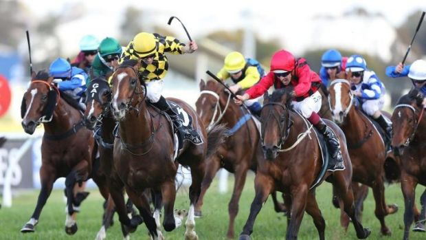 Unbeaten: Hallowed Crown (red) and Hugh Bowman take out the Golden Rose.
