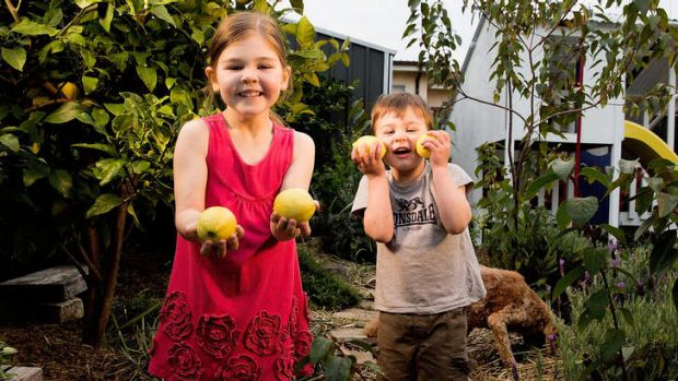 Zara Alcock, 6, and her brother Henry, 3, in their garden.