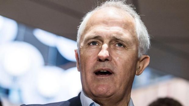 Richard McLelland, the secretary of the Australian Community Television Alliance says Malcolm Turnbull (pictured) may ...