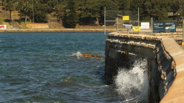 Sydney's Farm Cove Sea Wall, now repaired - rises about 1 metre above the current highest tides.