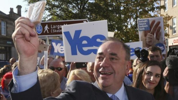 """Scotland's First Minister Alex Salmond takes a """"selfie"""" photograph as he campaigns for the Yes vote through Largs, Ayrshire."""