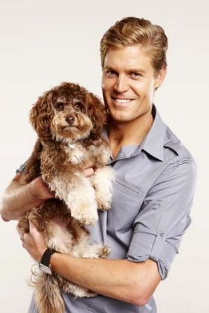 Animal antics: <i>Bondi Vet</i>.