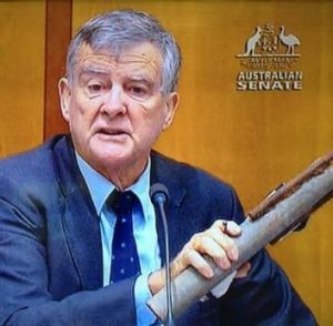 "Senator Bill Heffernan brandishes his ""pipe bomb"" inside Parliament House in 2012."