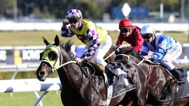 Salute: Sacred Falls takes out the group 1 George Main Stakes for trainer Chris Waller.