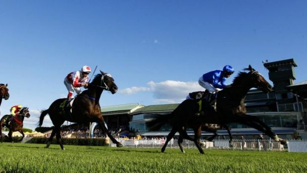 Shifting sands: Sweynesse and Kerrin McEvoy will team up for the last time at Rosehill on Saturday as the jockey bids ...