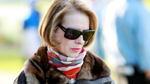 Numbers game: Melbourne Cup-winning trainer Gai Waterhouse.