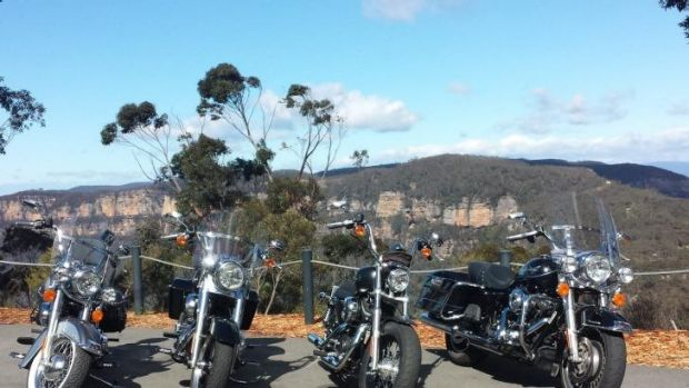 Harley-Davidson bikes parked at a lookout.