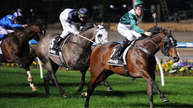 Tommy Berry guides Almalad home in the Group 2 Stutt Stakes at Moonee Valley on Friday night.