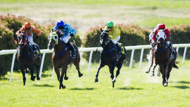 That's Freedom, second from left, rides away to victory at Queanbeyan on Monday.