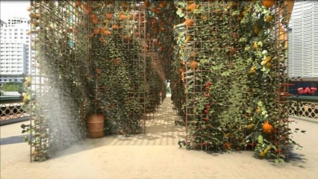 An artist's impression of the garden.