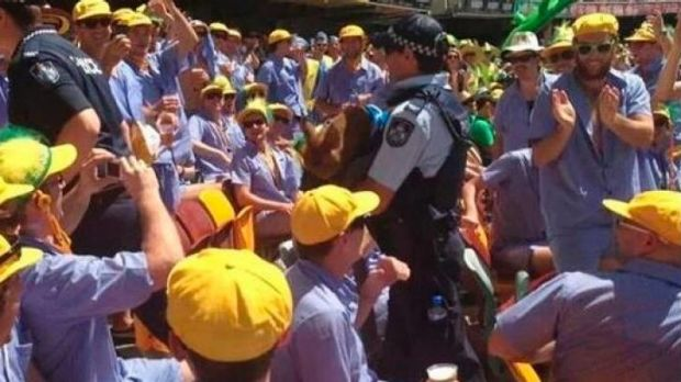 Police seize the pig smuggled into the Gabba.