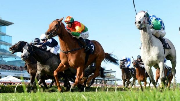 The 2013 Turnbull Stakes was won by Happy Trails.