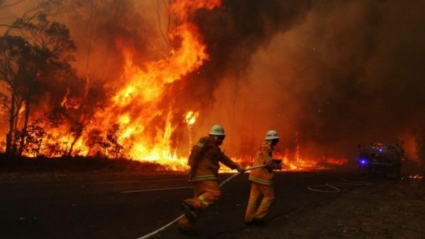 """Firefighters battle a blaze in the Blue Mountains in September, 2013, a month of """"unprecedented"""" high temperatures."""