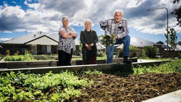 Judith Young, Heather MacKell, and Ian Barlow in the vege garden of their retirement village in Rivett.
