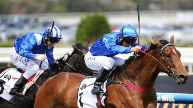 In charge: Kerrin McEvoy rides Earthquake to victory at Caulfield on Saturday.