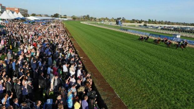 Punters galore: Tracking the action on Caulfield Guineas day.
