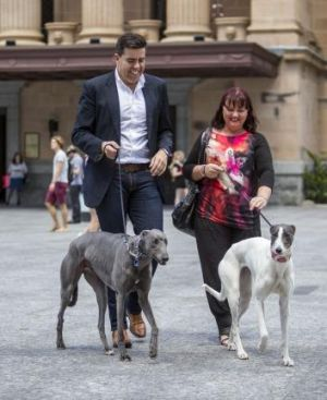 Councillor Milton Dick outside Brisbane Town Hall with Lisa Paxton and her greyhounds Frankie and Chloe.