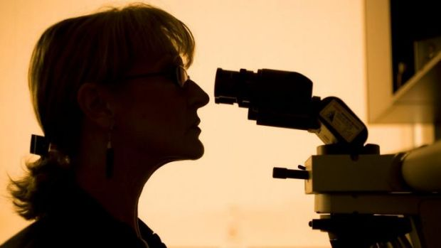 A CSIRO study found up to 40 per cent of Australians don't engage with science.
