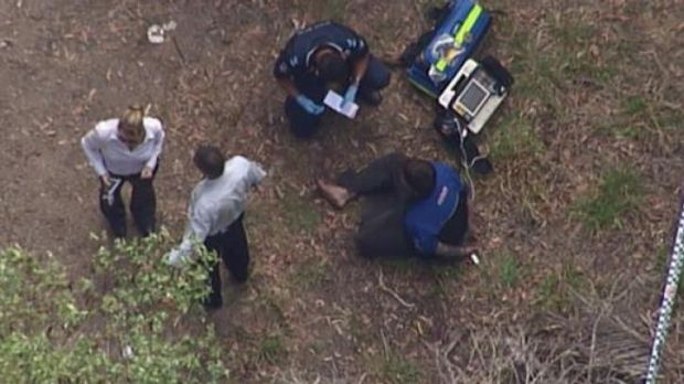 A man has been shot by police south of Brisbane.