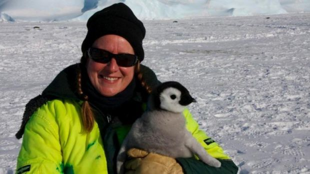 Narelle Campbell, a station leader in the Australian Antarctic Territory, is one of the NSW finalists.