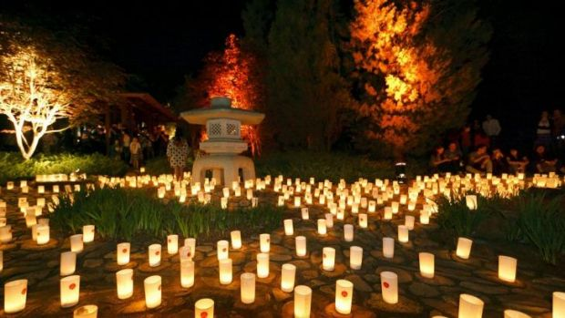 All lit up: Candles glow at last year's Canberra Nara Candle Festival.