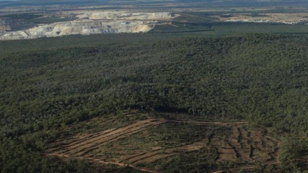 Maules Creek mine area inside the Leard State Forest: Whitehaven expects to move its first coal in January.