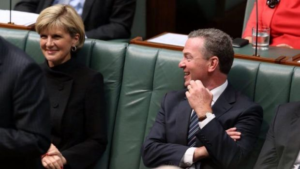Future PM? Education Minister Christopher Pyne tries to hose down suggestions Julie Bishop is a potential leader.
