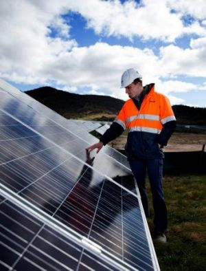 Solar panels at the Royalla plant in the ACT.