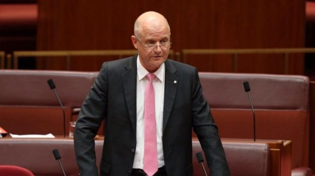 Seeking equality: Liberal Democratic senator David Leyonhjelm.